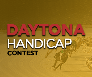 Daytona Handicap Greyhound Racing Contest